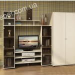 Дизайн стенки на заказ фото 16